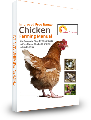 Poultry farm business plan in ethiopia pdf