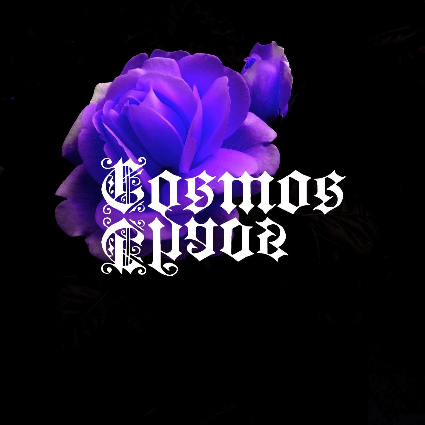 Cosmos and Chaos